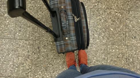 Koffer | raupenblau