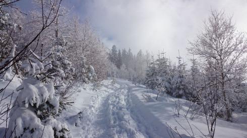 Neureuther Haus Richtung Gindelalm im Schnee | raupenblau