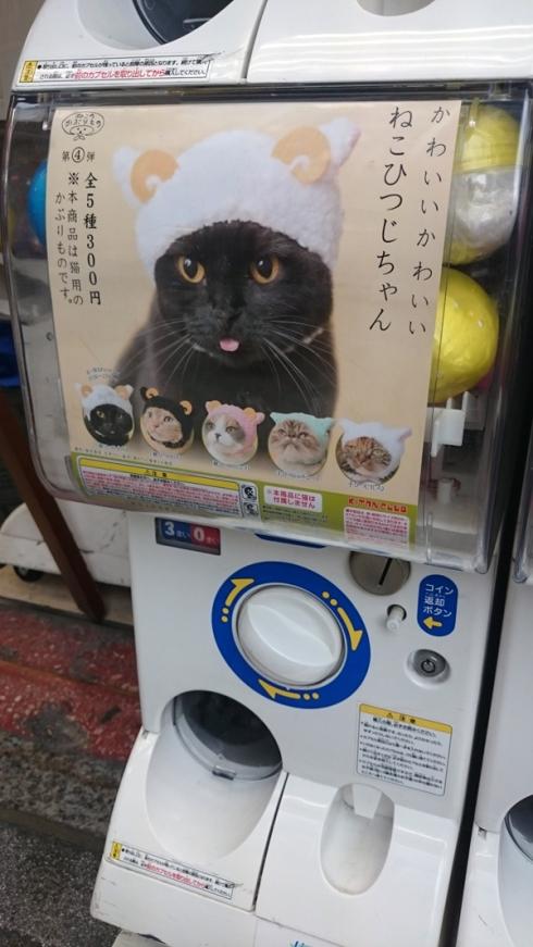 Japan | raupenblau